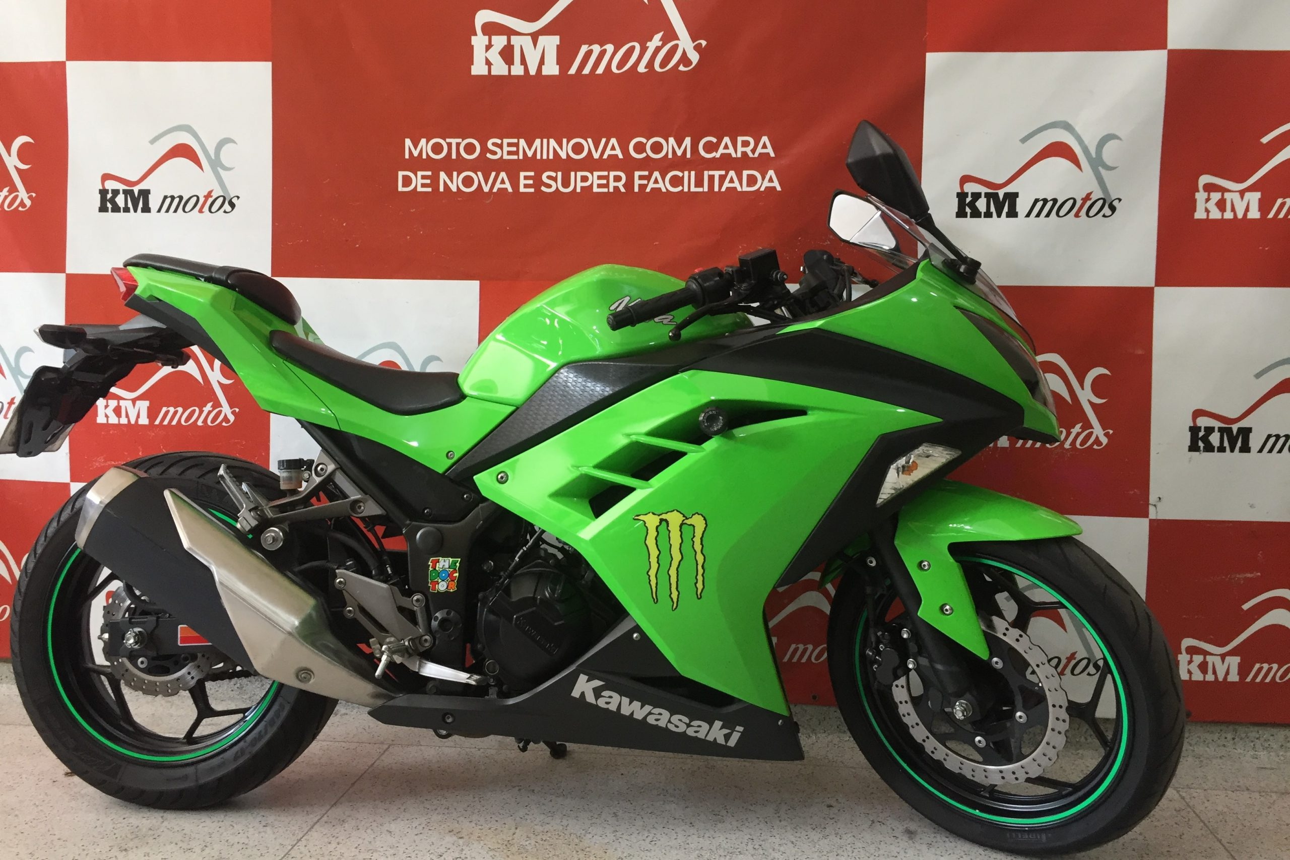 Kawasaki Ninja 300 Verde 2015